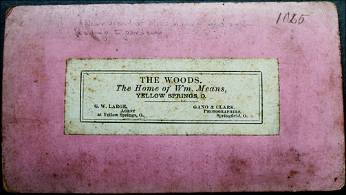 the-woods-wm-means-back